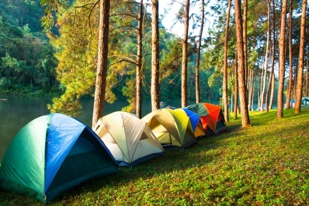 My Favorite Camping and Outdoors Books